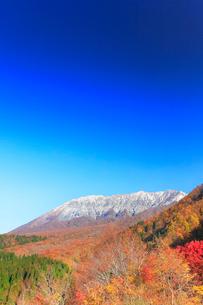 快晴の空に紅葉と冠雪の大山の写真素材 [FYI01799795]