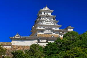 姫路城に快晴の空の写真素材 [FYI01799826]