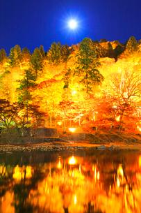 香嵐渓 紅葉に月ライトアップ夜景の写真素材 [FYI01799838]