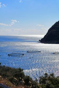 二木島湾のマグロ養殖いけすの写真素材 [FYI01799939]