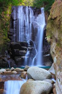 桑の木の滝の写真素材 [FYI01799942]