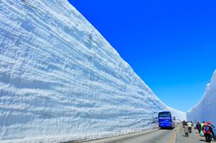 立山 雪の大谷ウォークと高原バスの写真素材 [FYI01799972]
