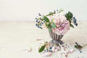 ブリキの花器に活けたカーネーションとビバーナムの写真素材 [FYI01799986]