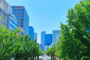 桜通より名古屋駅方向の高層ビルの写真素材 [FYI01800037]