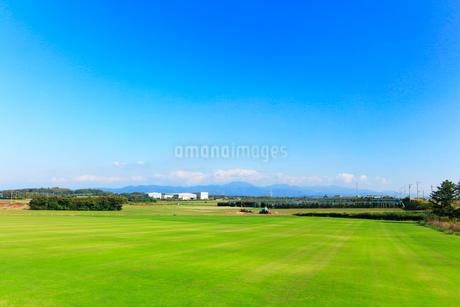刈り込まれた芝生の写真素材 [FYI01800060]