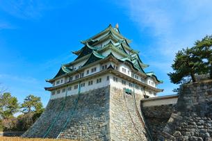 名古屋城天守閣の写真素材 [FYI01800107]