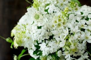 初夏の白い花をたっぷり活けたフラワーアレンジメントの写真素材 [FYI01800143]