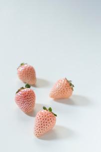 白い苺の写真素材 [FYI01800176]
