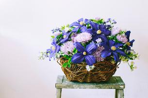 バスケットにアレンジされた初夏の花々の写真素材 [FYI01800191]