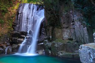 桑の木の滝の写真素材 [FYI01800232]