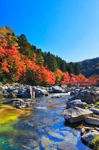 香嵐渓 紅葉と巴川に待月橋の写真素材 [FYI01800250]