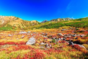 秋の立山 天狗平より剣岳などの山々を望むの写真素材 [FYI01800258]