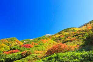 秋の立山連峰の写真素材 [FYI01800309]