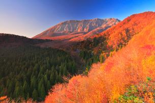 鍵掛峠より望む紅葉と夕焼けの大山の写真素材 [FYI01800325]