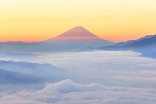 高ボッチ高原より朝焼けの富士山と雲海の写真素材 [FYI01800362]