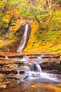 秋の赤目四十八滝 紅葉と琵琶滝の写真素材 [FYI01800370]