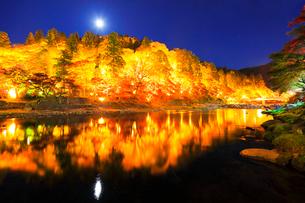 香嵐渓 紅葉と待月橋に月ライトアップ夜景の写真素材 [FYI01800384]
