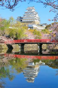 姫路城 天守閣と桜に城見橋の写真素材 [FYI01800399]