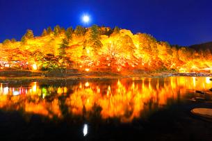 香嵐渓 紅葉と待月橋に月ライトアップ夜景の写真素材 [FYI01800408]