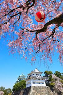 名古屋城 西南隅櫓と天守閣に枝垂桜の写真素材 [FYI01800452]