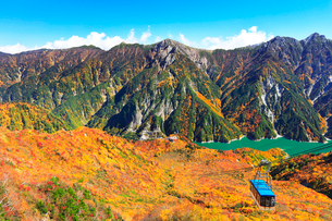 秋の立山 黒部湖と立山ロープウェイに紅葉の写真素材 [FYI01800627]