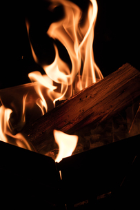 たき火の炎の写真素材 [FYI01800669]