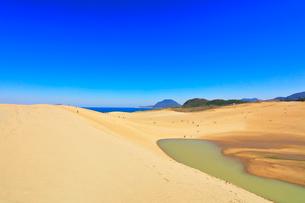 快晴の鳥取砂丘と日本海の写真素材 [FYI01800676]
