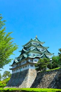 名古屋城天守閣の写真素材 [FYI01800692]