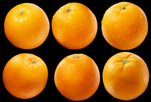 オレンジ素材黒バックの写真素材 [FYI01800773]
