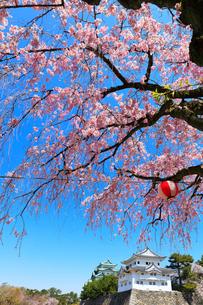 名古屋城 西南隅櫓と天守閣に枝垂桜の写真素材 [FYI01800794]