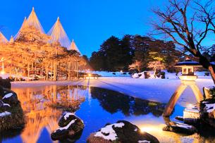 冬の北陸金沢 兼六園ことじ灯籠と唐崎松ライトアップ 冬の段 の写真素材 [FYI01800813]