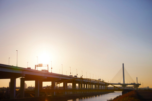 夜明けの首都高速道路の写真素材 [FYI01800828]