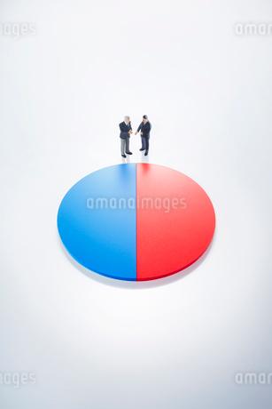 ビジネスマン円グラフイメージの写真素材 [FYI01800847]
