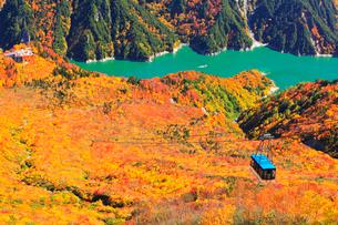 秋の立山 黒部湖に遊覧船と立山ロープウェイに紅葉の写真素材 [FYI01800880]