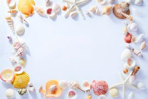 貝がらのフレームの写真素材 [FYI01800893]