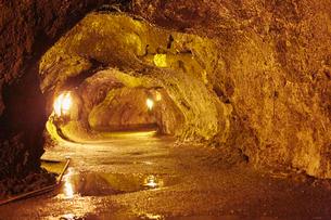 キラウエアの溶岩トンネルの写真素材 [FYI01800927]