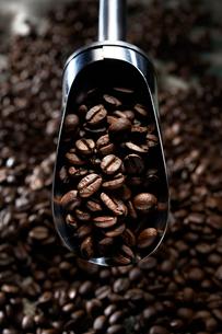 焙煎されたコーヒー豆の写真素材 [FYI01800945]