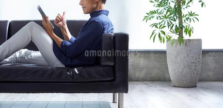 タブレット端末を見る男性の写真素材 [FYI01801215]