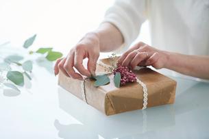 贈り物を包む女性の手の写真素材 [FYI01801243]