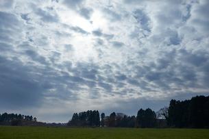 雲と森のシルエットの写真素材 [FYI01801250]