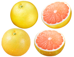 ピンクグレープフルーツの写真素材 [FYI01801253]