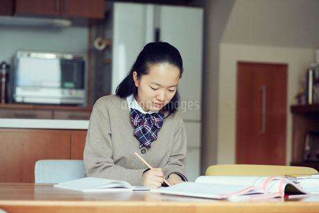勉強する女の子の写真素材 [FYI01801306]