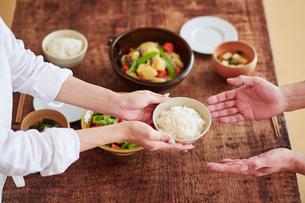 食事の準備をする女性の写真素材 [FYI01801326]