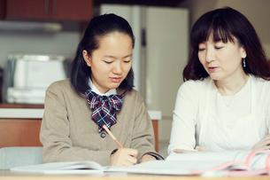 勉強する女の子の写真素材 [FYI01801369]