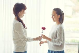 母と娘の写真素材 [FYI01801370]
