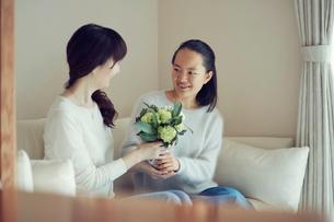 母と娘の写真素材 [FYI01801416]