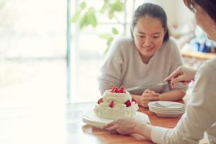 ケーキを見る女の子の写真素材 [FYI01801417]
