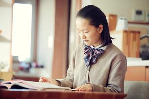 勉強する女の子の写真素材 [FYI01801443]