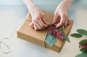 贈り物を包む女性の手の写真素材 [FYI01801764]