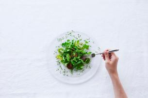 サラダを食べる女性の写真素材 [FYI01801823]
